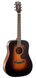 Cort Earth 300V  SB