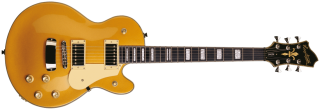 Hagstrom Swede - Gold Top