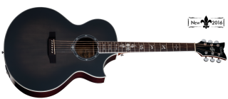 Schecter SYNYSTER GATES-GA SC-ACOUSTIC TBBS